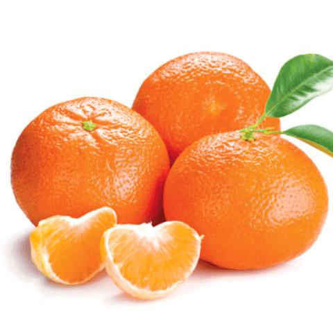 Clementine Biologiche di Sicilia